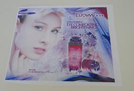 Karoga auduma banner, ko izdrukā 1,6 m (5 pēdas) eco solvent printeris WER-ES160 4