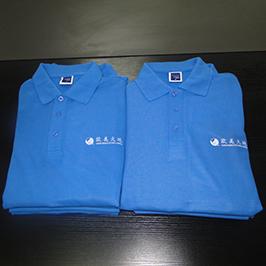 Polo kreklu pielāgota drukāšanas paraugs ar A3 t-kreklu printeri WER-E2000T