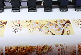 Pašlīmējošais vinils izdrukāts ar 1,8 m (6 pēdas) ekoloģisko šķīdinātāju printeri WER-ES1802